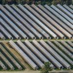 Aerial view of a fur farm